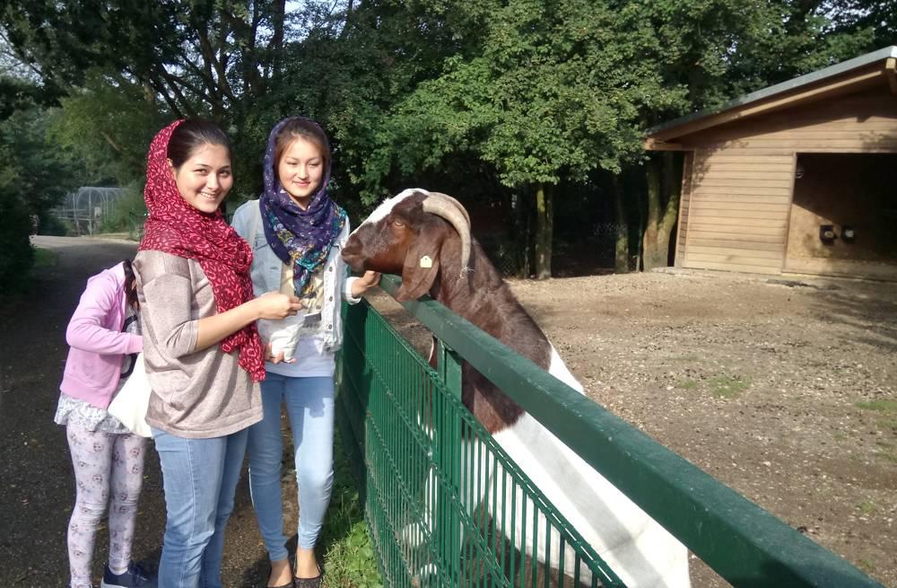 Ein Besuch im Tierpark Linz